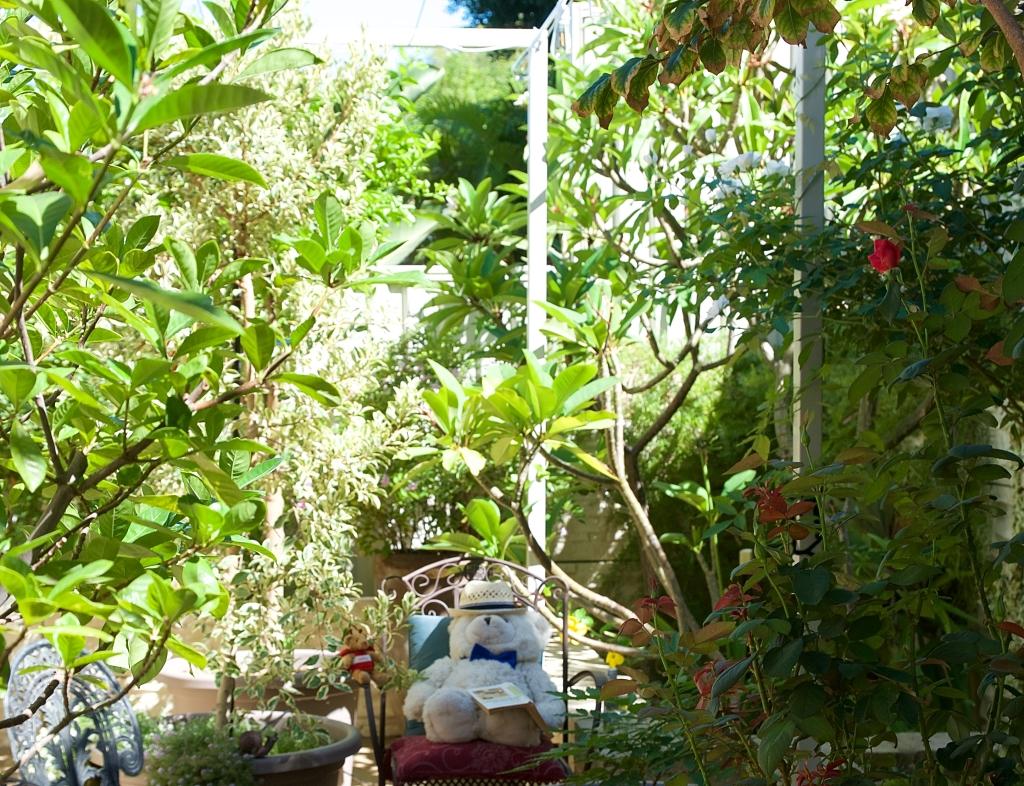 Garden Ponder 2932
