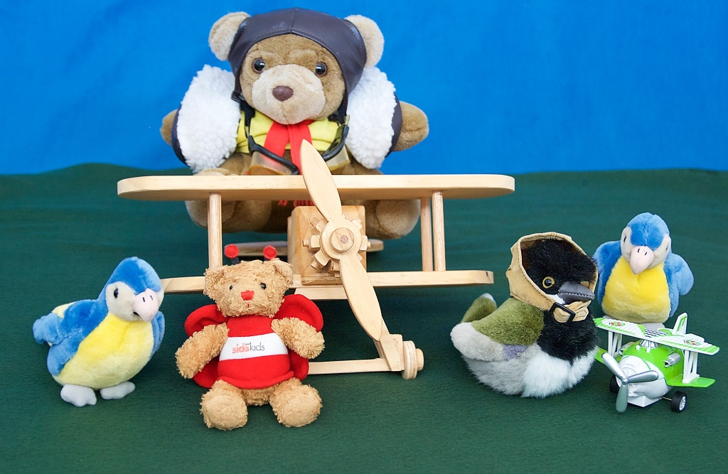 Flyer Bear and his magnificent machine, Miss Crested with her stunt plane, BeeBear and the daredevil Corella Twin