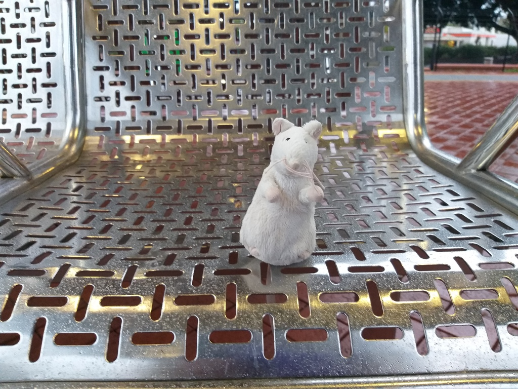 Office Ratty on a cold metal seat at the train station